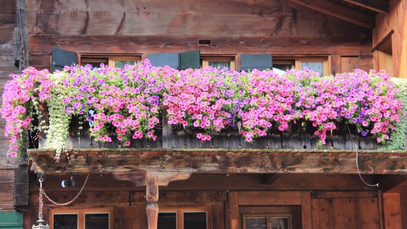 Alter hölzerner Balkon mit blühenden bunten Petunien lizenzfreies stockfoto