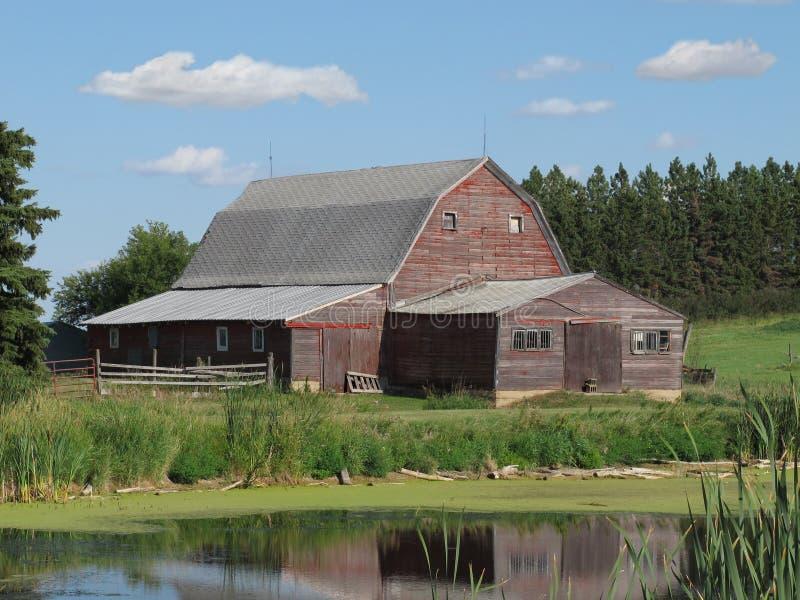 Alter hölzerner Bauernhofstall im amerikanischen Grasland. stockfotografie