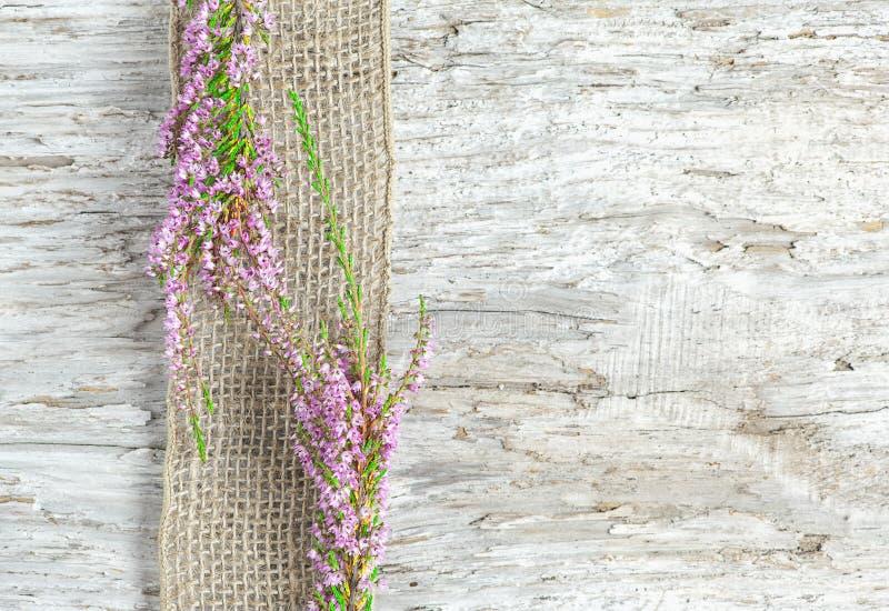 Alter hölzerner Hintergrund mit Heide und Rausschmissband stockfotos