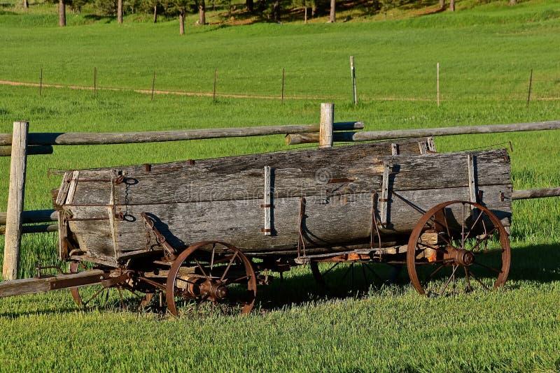 Alter hölzerner Lastwagen in einer Weide stockfotos