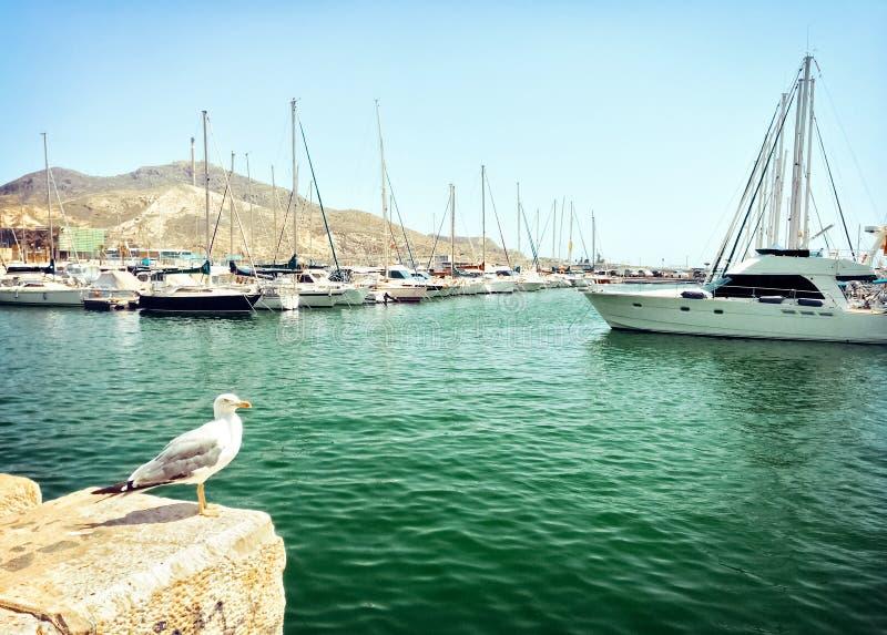 Alter Hafen in Cartagena, Spanien stockbilder