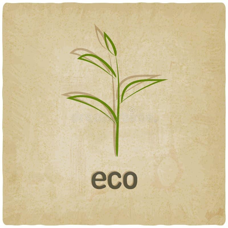 Alter Hintergrund Eco vektor abbildung