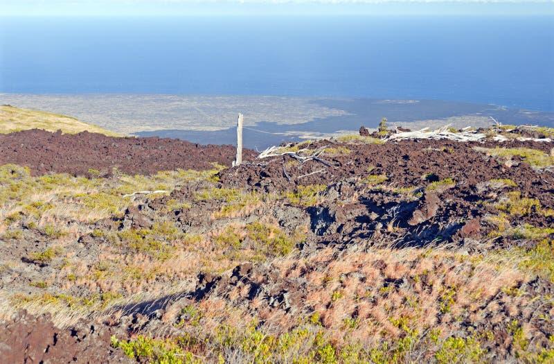 Alter Lavafluss, der zu den Ozean führt stockfotos