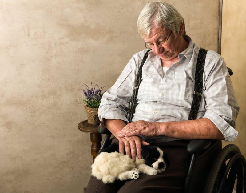 Alter Mann mit Hund stockfotografie