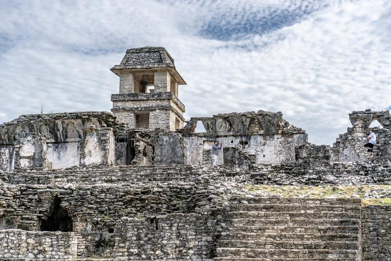 Alter Mayatempel im palenque Mexiko stockbild