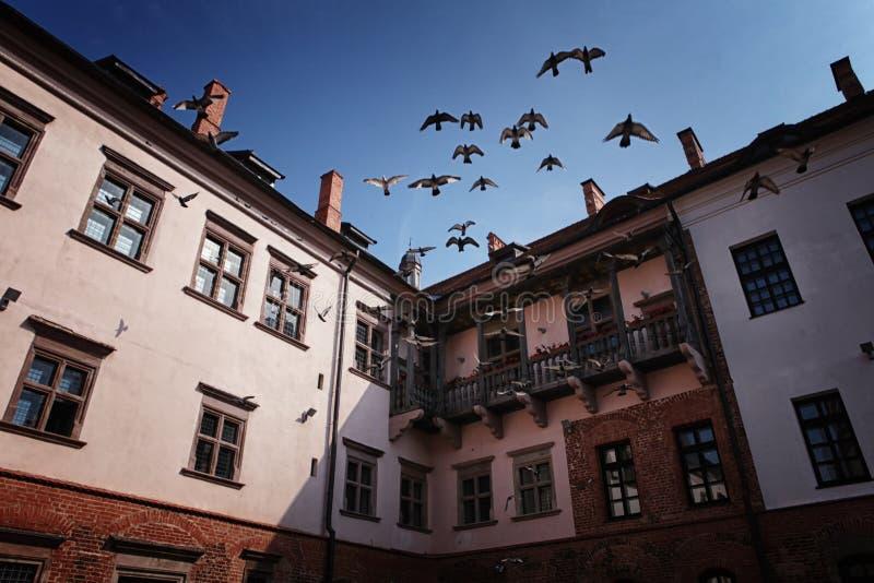 Alter Mir Castle stockfoto