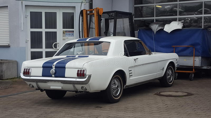 Alter Mustang lizenzfreie stockfotografie