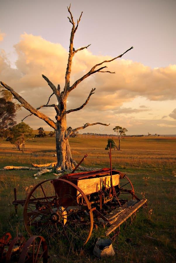 Alter Pflug auf Bauernhof am Sonnenuntergang stockfotos