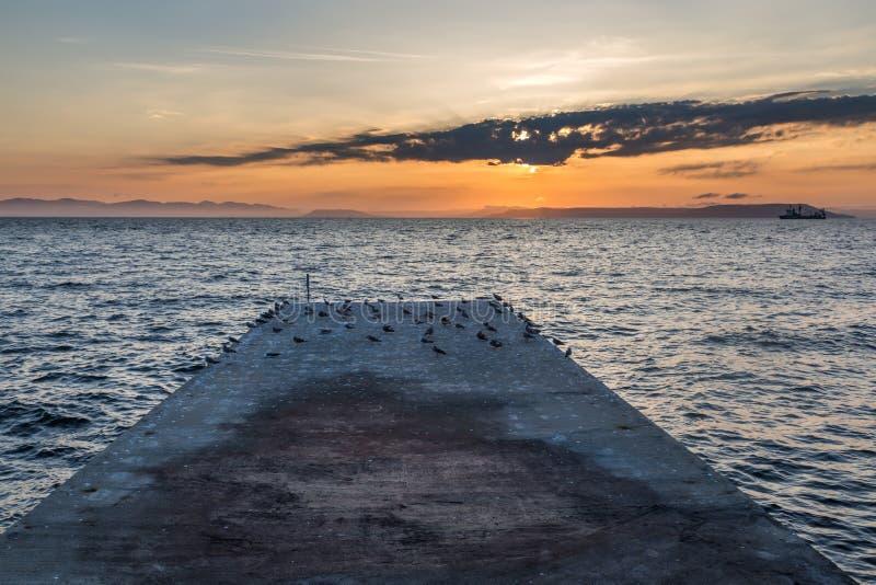 Alter Pier mit vielen von Seemöwen und von Schiff bei Sonnenuntergang lizenzfreies stockbild
