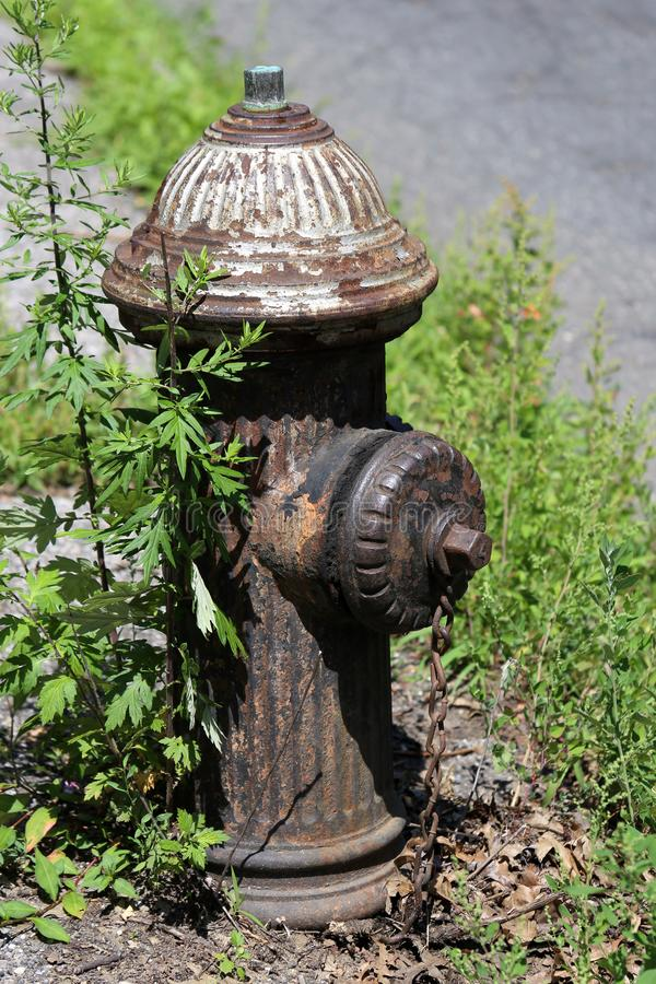 Alter rostiger Hydrant in New York City stockfotografie
