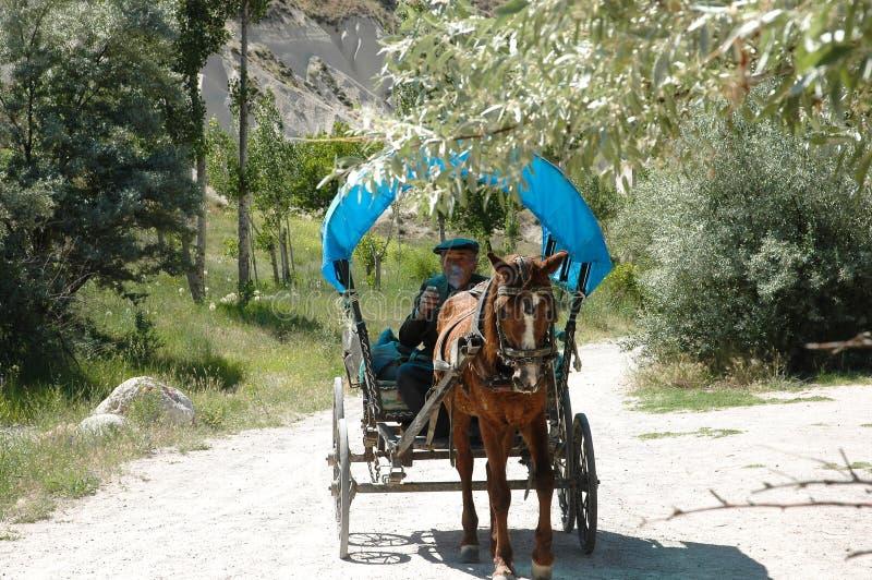 Alter türkischer Landwirt, der Pferd u. Buggy antreibt stockbild