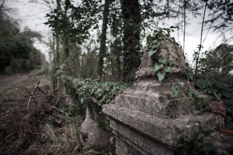 Alter verlassener Garten lizenzfreie stockbilder