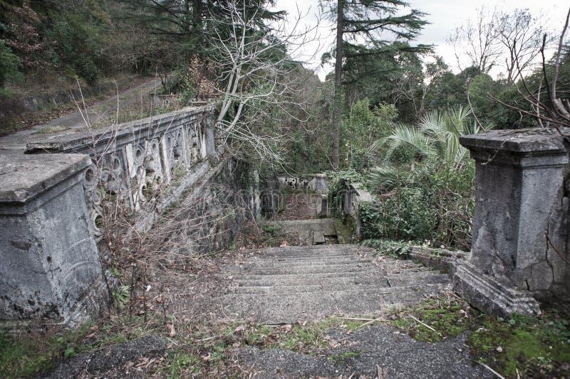 Alter verlassener Garten stockfoto