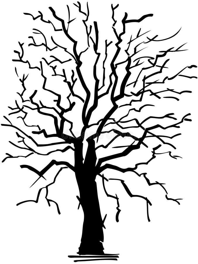 Alter verwelkter Baumkarikatur Vektor Clipart stock abbildung