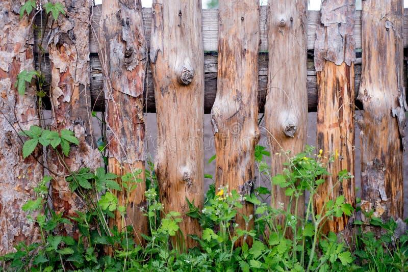 Alter verwitterter szenischer Bretterzaun mit Gras Sehen Sie meine anderen Arbeiten im Portfolio lizenzfreie stockfotografie