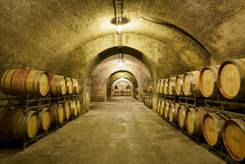 Alter Weinkeller mit hölzernen Fässern lizenzfreie stockfotografie