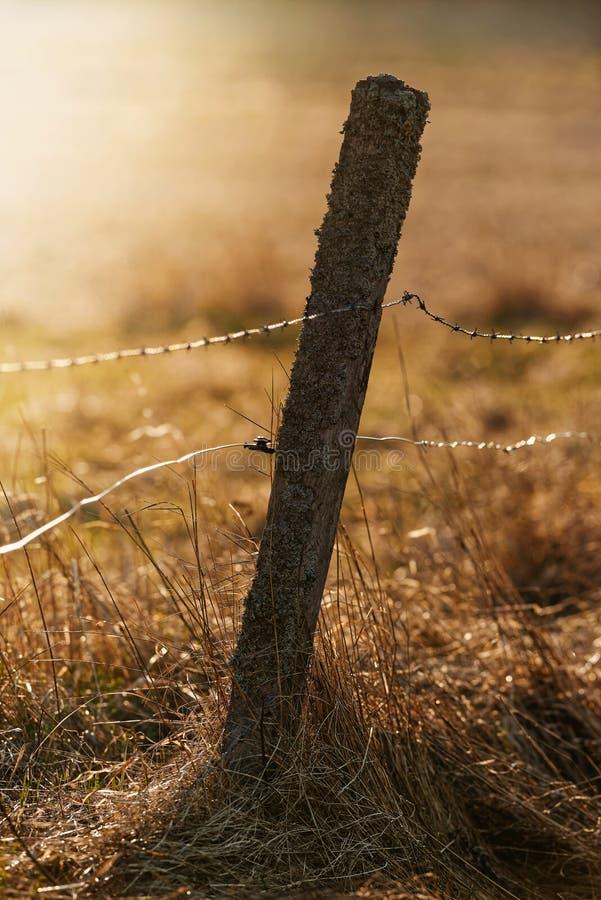 Alter Zaunpfosten mit Stachel- und elektrischem Draht für Viehbestand dur lizenzfreie stockfotos