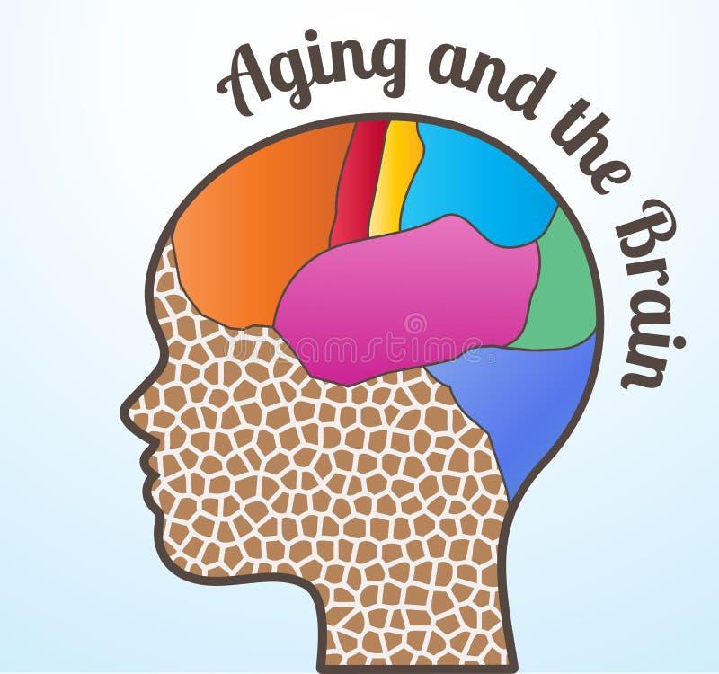 Altern und das Gehirn lizenzfreie abbildung