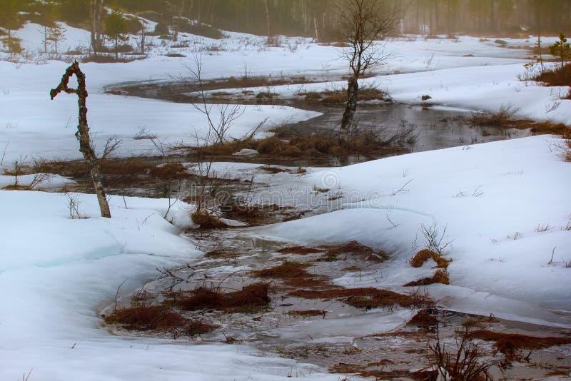 alternance des gels de jour de dégel et de nuit - crique image stock