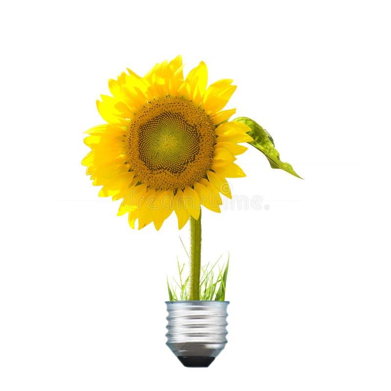 Alternatieve energiebol royalty-vrije stock foto