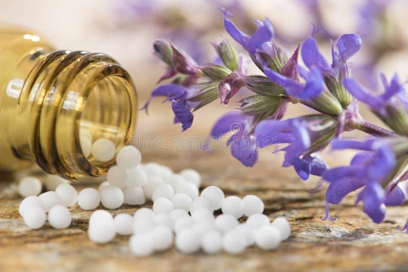 Alternatieve geneeskunde met kruiden en homeopathische pillen royalty-vrije stock foto