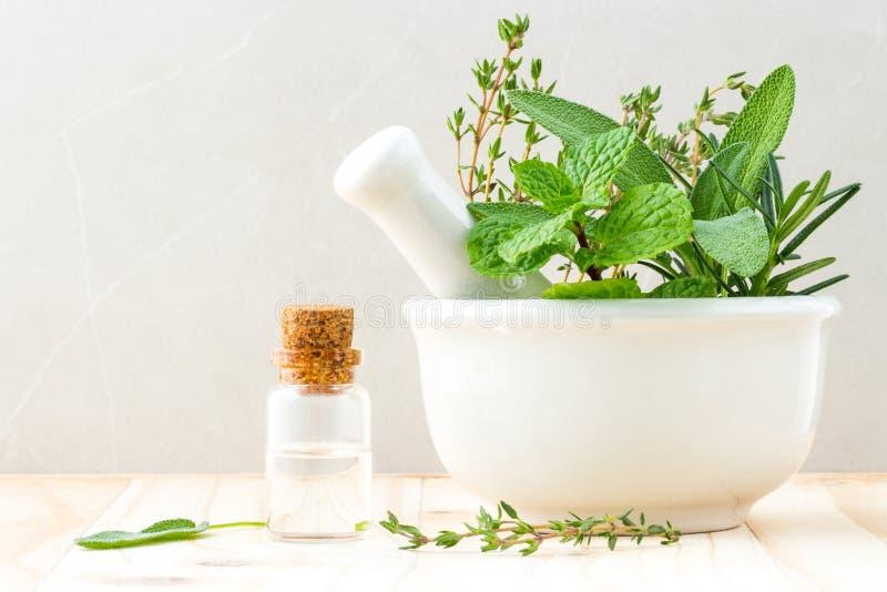 Alternatieve gezondheidszorg verse kruiden en Fles van aromatherapy royalty-vrije stock afbeelding