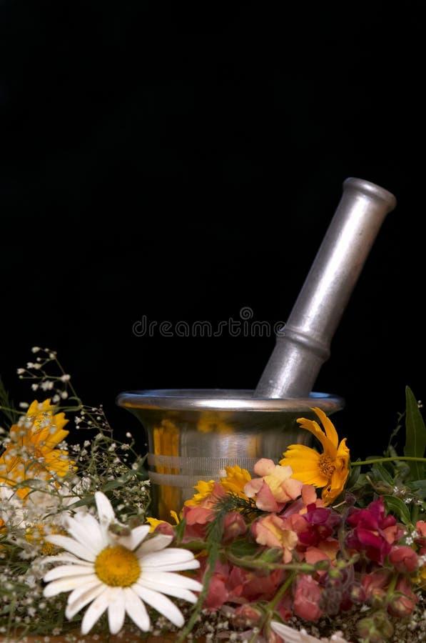 Alternatieve schoonheidsmiddelen stock afbeelding