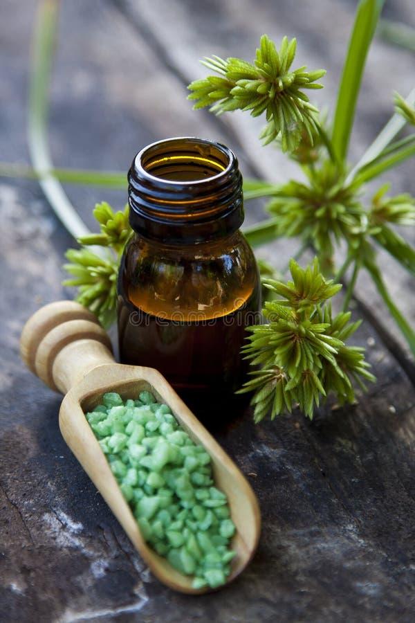 Alternativa natural de la medicina imagenes de archivo