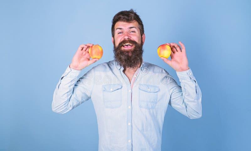 Alternativa sana Sirva las manzanas sonrientes barbudas de los controles en fondo del azul de las manos Manzanas en alternativa s imágenes de archivo libres de regalías