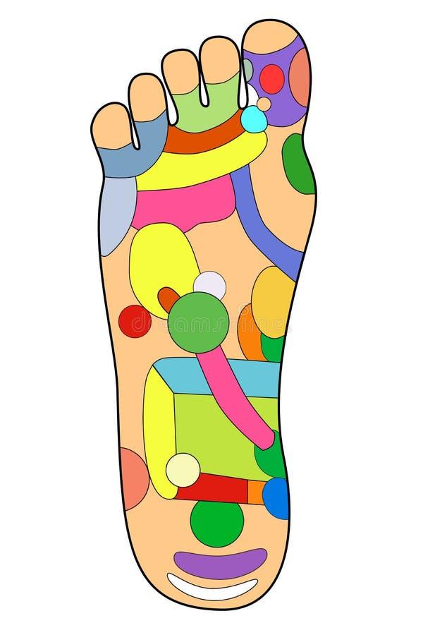 A alternativa tradicional cura, acupuntura - esquema do pé ilustração stock