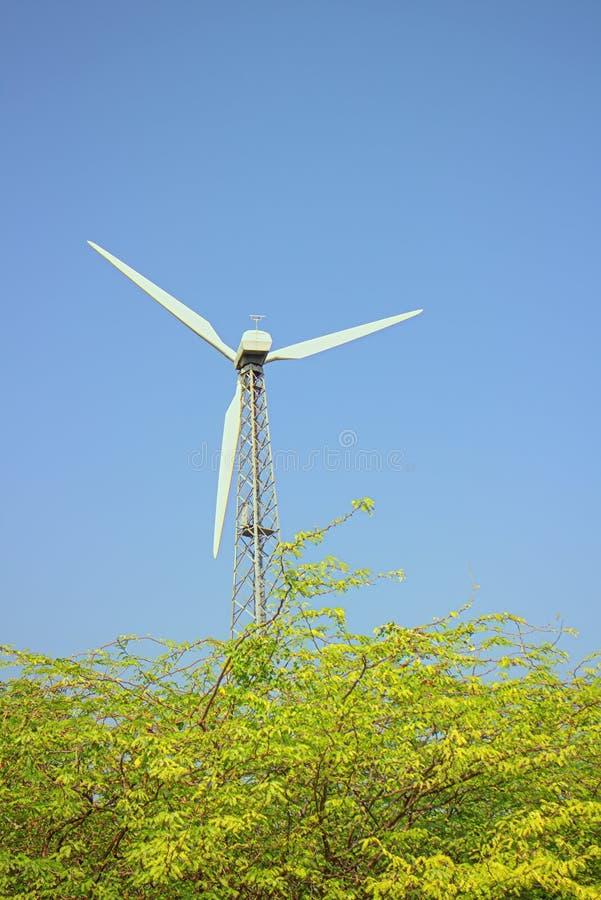 Alternativas 6 da energia Exploração agrícola de vento na província indiana de Kerala imagem de stock royalty free