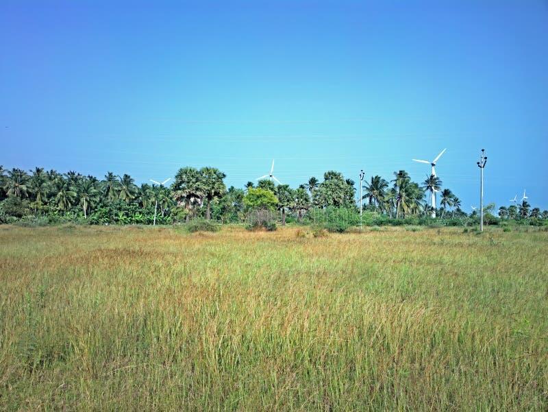 Alternativas 4 da energia Exploração agrícola de vento na província indiana de Kerala fotografia de stock