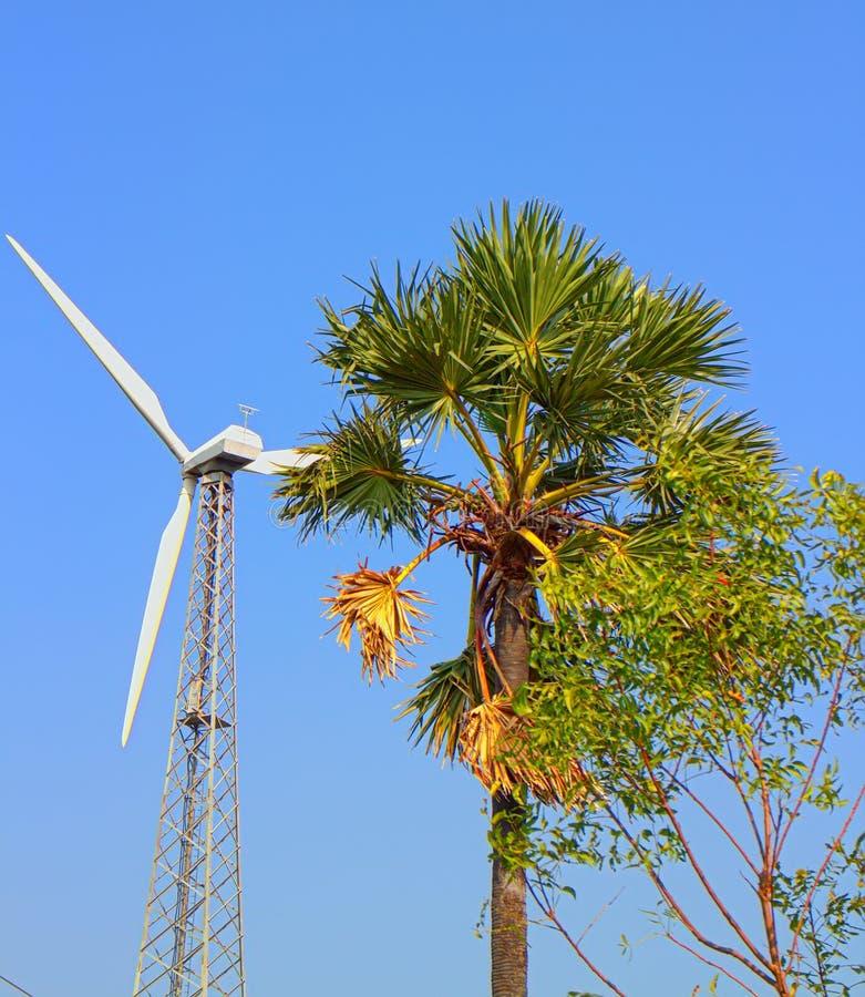 Alternativas 6 da energia Exploração agrícola de vento na província indiana de Kerala foto de stock