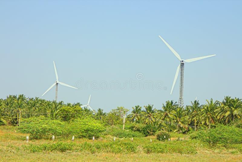 Alternativas 6 da energia Exploração agrícola de vento na província indiana de Kerala foto de stock royalty free
