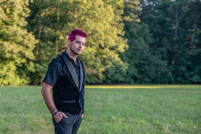 Alternative diverse male - black clothes, pink hair smirking at camera royalty free stock images
