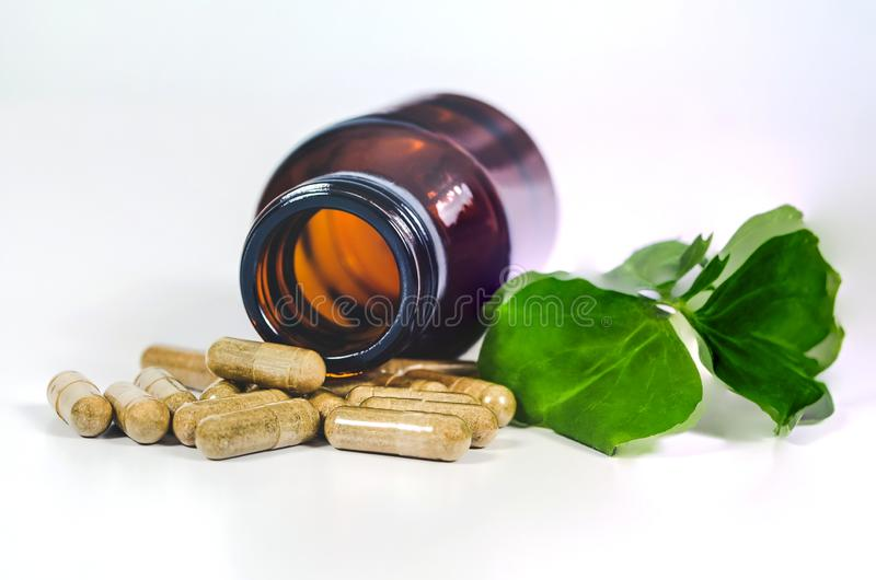 Alternative herb capsule spill out of bottle ,health. Concept royalty free stock image