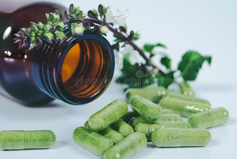 Alternative herb capsule spill out of bottle ,health. Concept royalty free stock photo