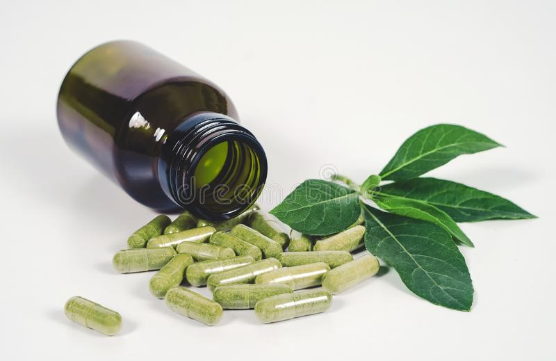 Alternative herb capsule spill out of bottle ,health. Concept royalty free stock images