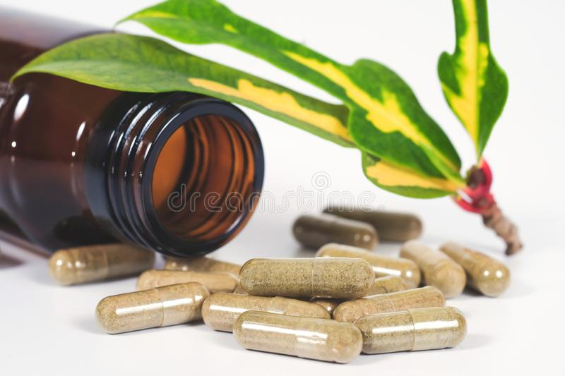 Alternative herb capsule spill out of bottle ,health. Concept stock photo