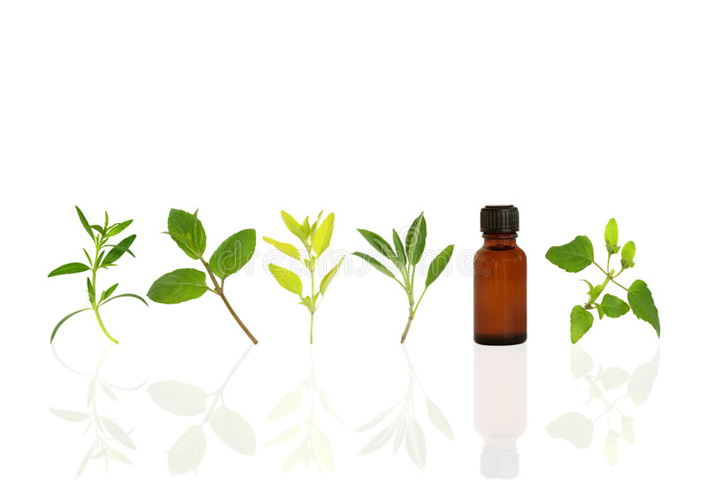 Alternative Herbs for Health royalty free stock photography