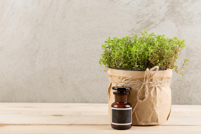 Alternative medicine concept - medicine in bottles and medicinal herbs on a wooden table royalty free stock photos