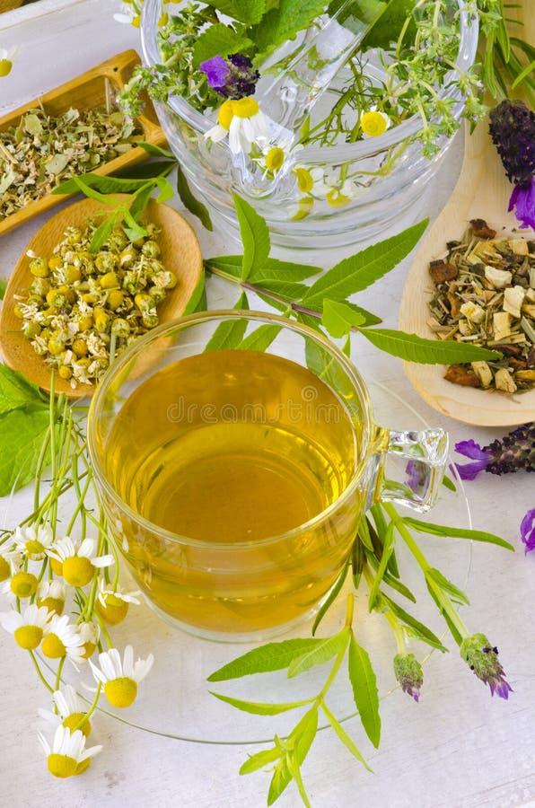 Alternative Medicine. Herbal Therapy. stock photos