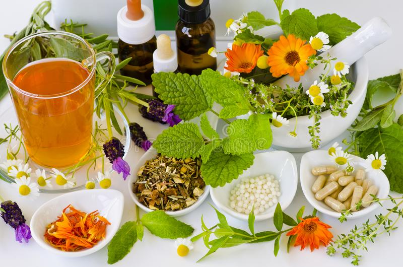 Alternative Medicine. Herbal Therapy. Medical plants. royalty free stock photos