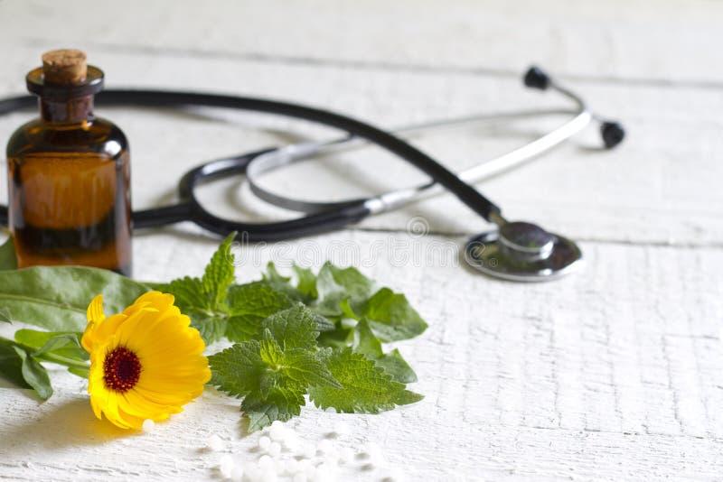 Alternative medicine herbs and stethoscope royalty free stock photo