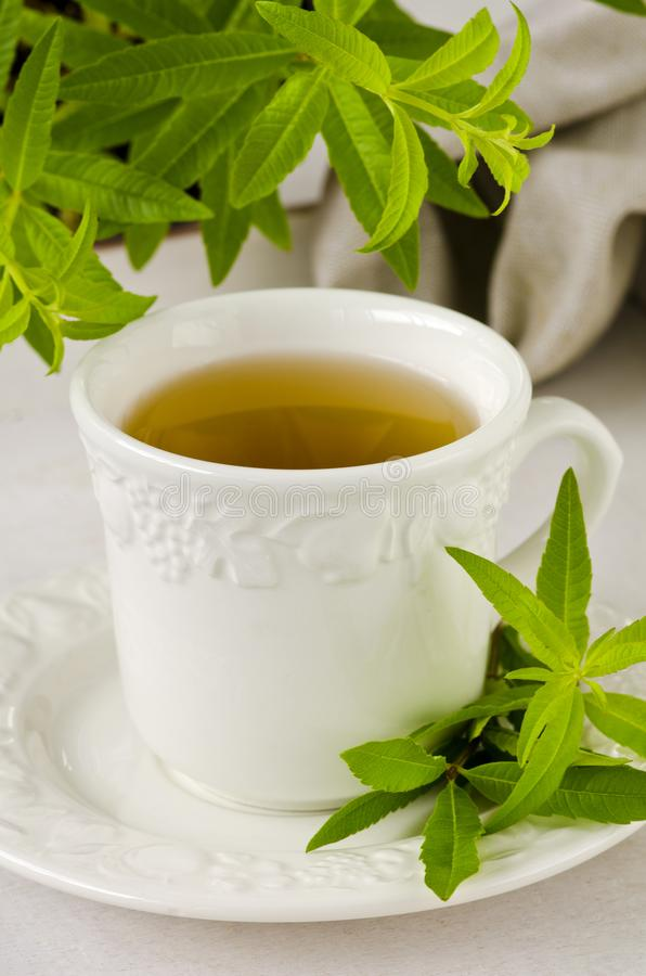 Alternative Medicine. Lemon verbena herbal tea. royalty free stock photo