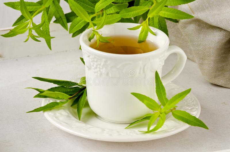 Alternative Medicine. Lemon verbena herbal tea. royalty free stock images