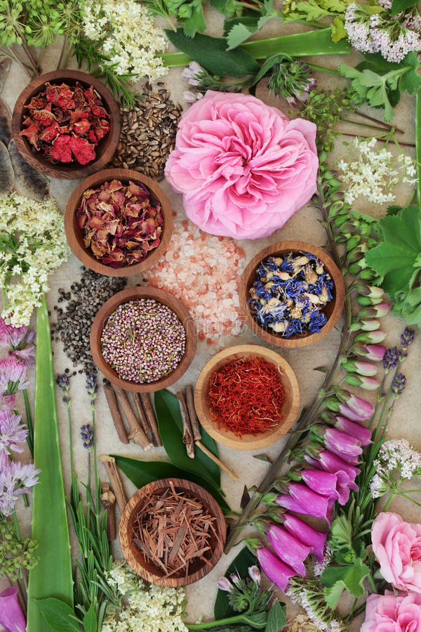 Alternative Medicine Selection. Used in natural healing with dried and fresh flowers and herbs on hemp paper background royalty free stock images
