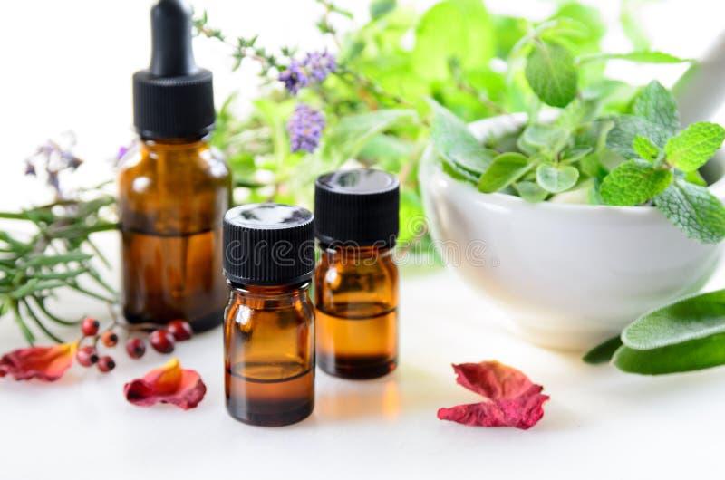 Alternative Therapie mit Kräutern und ätherischen Ölen lizenzfreies stockfoto