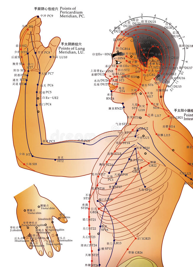 Alternativmedizin - Akupunktur-Diagramm