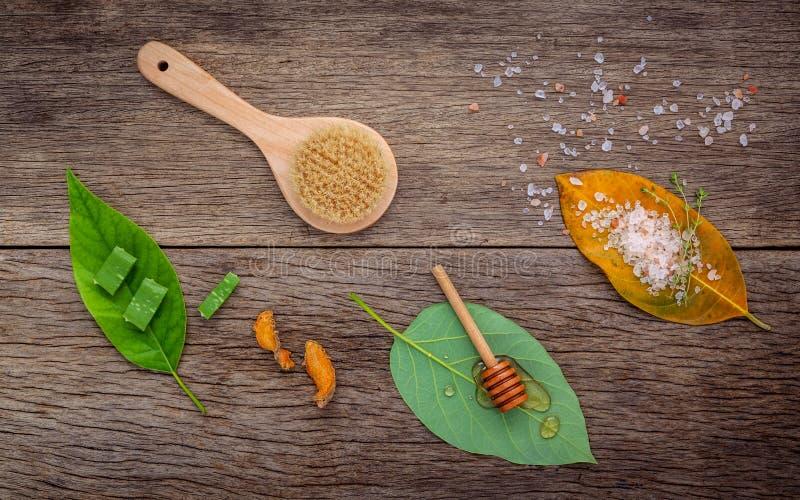 Alternativt hudomsorg och hemlagat skurar med naturligt ingredien arkivbilder